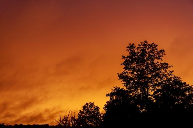 Dramático cielo rosa puesta de sol
