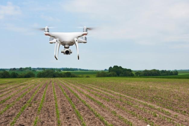 Drone quad copter con cámara digital de alta resolución en campo de maíz verde, agro