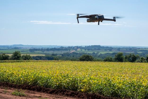 Drone volando sobre una plantación de soja en un día soleado en brasil.