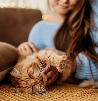 Dueño acariciando adorable gato