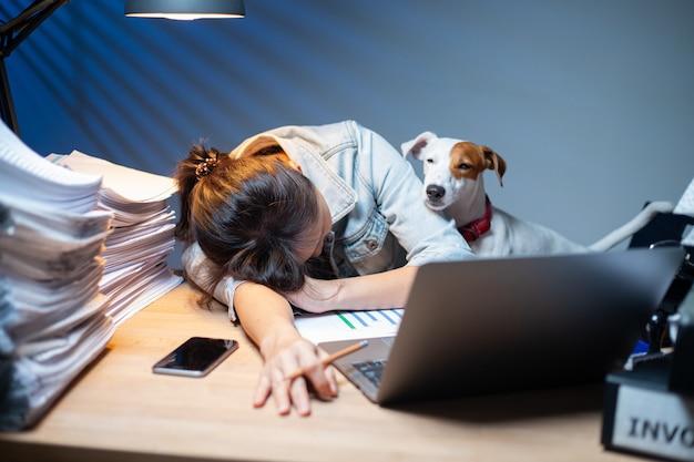 Dueño de la mujer asiática que trabaja horas extras con su perro en casa. área de trabajo interesante de jack russell terrier. informe del documento de verificación. trabajar desde casa.