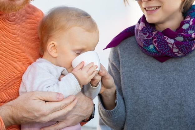 Dulce niña bebiendo de la taza blanca mientras está sentado en el regazo de los papás