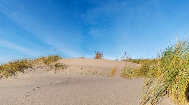 Duna de arena y cielo azul claro en verano