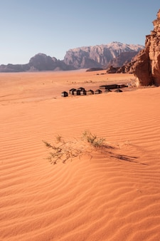Duna de arena con una espina en el fondo campamento turístico beduino en el famoso desierto rojo