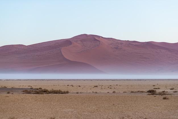 Dunas de arena en el desierto de namib al amanecer, viaje en el maravilloso parque nacional namib naukluft, destino de viaje en namibia, áfrica.