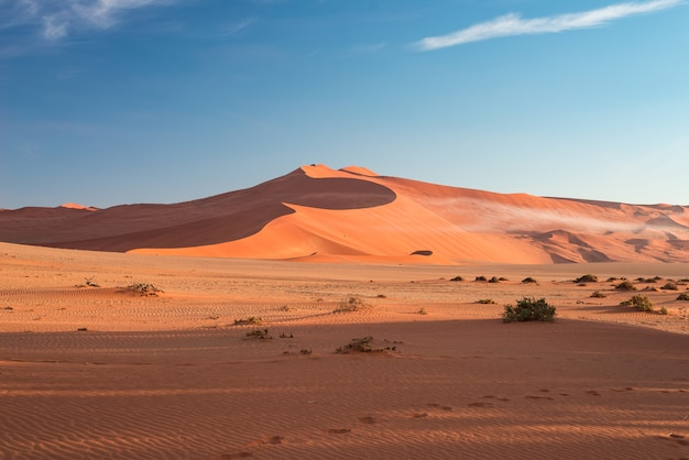Dunas de arena en el desierto de namib al amanecer, viaje en el maravilloso parque nacional namib naukluft, destino de viaje.