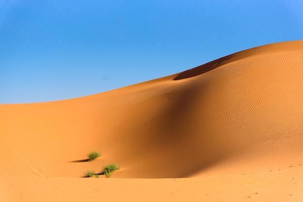 Dunas de arena en el desierto del sahara