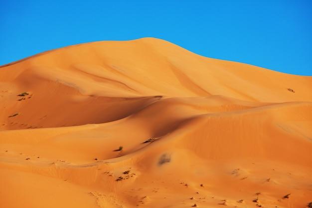 Dunas de arena en el desierto