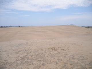 Las dunas de arena de playa