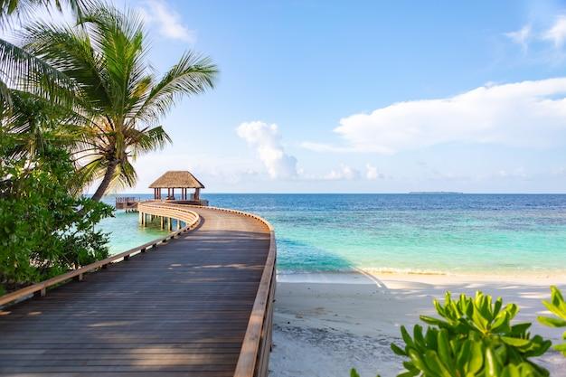 Dusit thani maldives camino peatonal al embarcadero