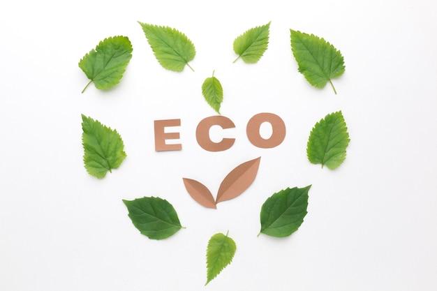 Eco muestra con marco de hojas