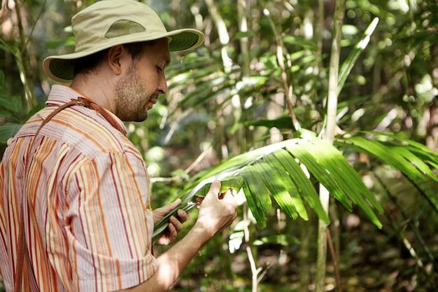 Ecología y conservación del medio ambiente. ecologista con sombrero de panamá examinando hojas de plantas verdes, buscando enfermedades de las manchas foliares, con aspecto serio.