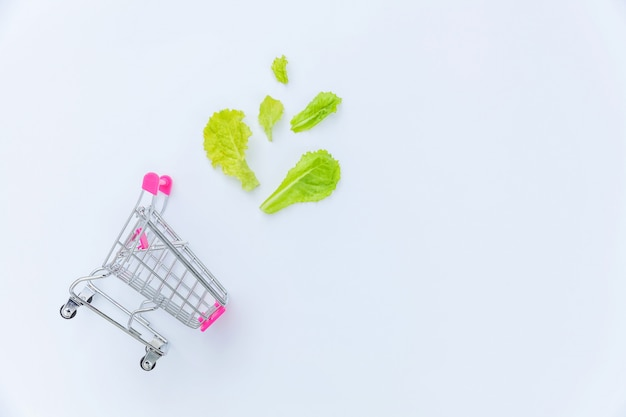 Ecología productos ecológicos comida vegetariana vegana concepto. carrito de supermercado pequeño supermercado para ir de compras con hojas de lechuga verde aislado