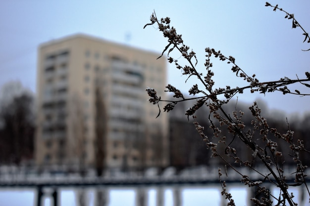 Edificio de apartamentos con paneles en invierno