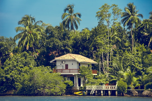 Edificio rodeado de bosque tropical. sri lanka.