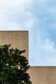 Edificio con superficie de yeso grueso