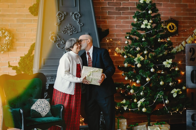 Una elegante pareja de ancianos está celebrando la navidad.
