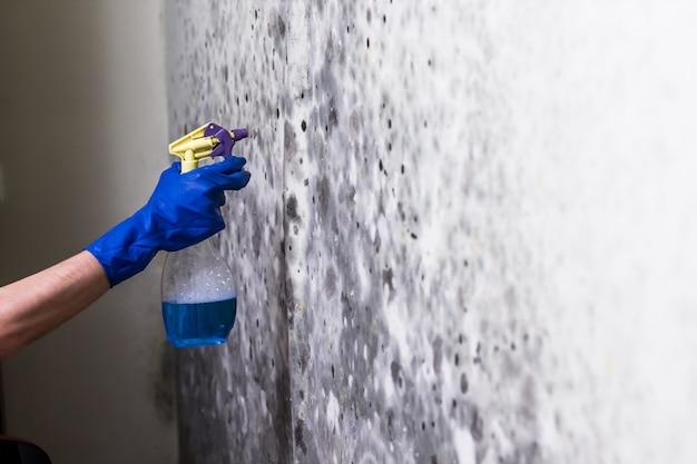 Eliminar el moho en la pared de la habitación