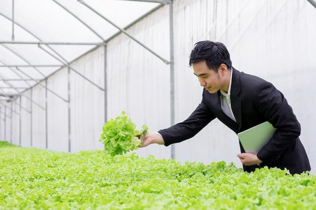 Los empresarios examinan informes de calidad de vegetales orgánicos.