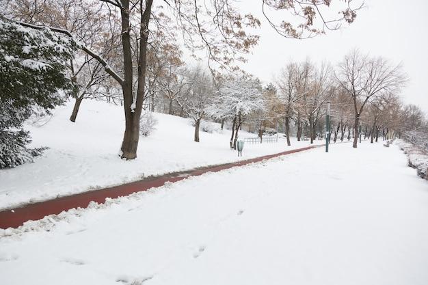 Empy road y la nieve en la isla de margaret, budapest