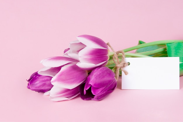 Encantadora tarjeta de felicitación con flores de tulipanes sobre fondo rosa