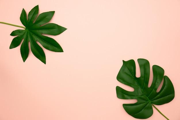 Endecha plana de hojas tropicales verdes en viejo fondo color de rosa con el espacio de la copia.