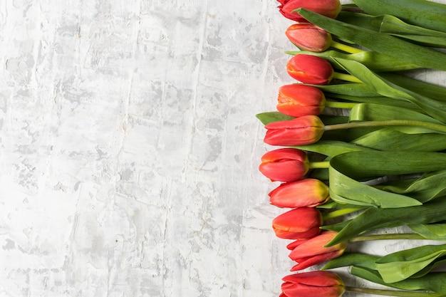 La endecha plana del ramo grande de tulipán de la primavera florece sobre el espacio gris del fondo y de la copia para el texto.