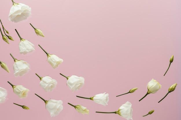 Endecha plana de rosas de primavera con espacio de copia