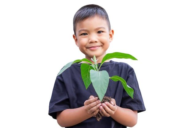 Enfoque selectivo de las manos niño asiático sosteniendo una pequeña planta verde con suelo.