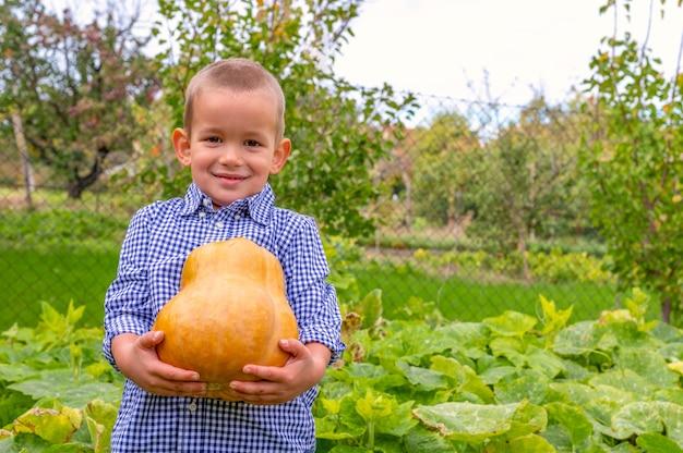 Enfoque superficial de un niño pequeño emocionado sosteniendo una calabaza en un campo durante el día