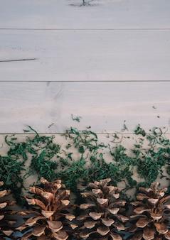 Enganches con musgo en tablero de madera.