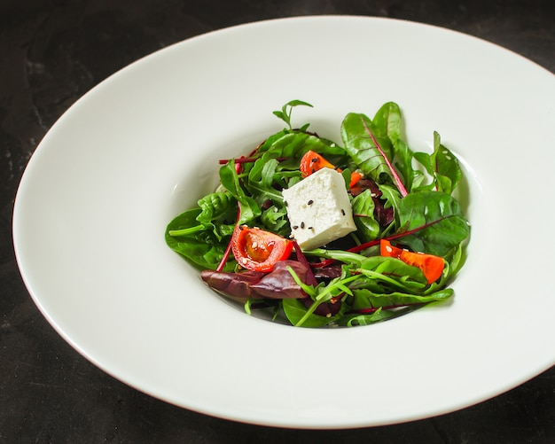 Ensalada saludable de hojas en un plato blanco (mezcle micro greens, jugosa merienda). fondo de comida