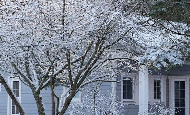 Entrada frontal nevada a casa suburbana. invierno en el jardín.