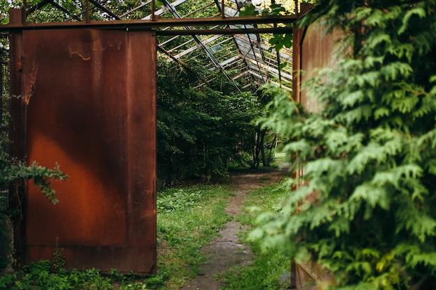 Entrada oxidada al bosque