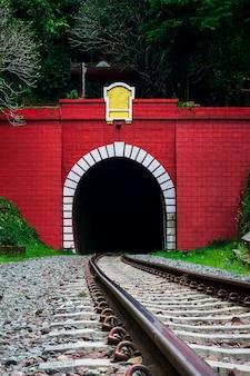 Entrada del túnel ferroviario en montaña.