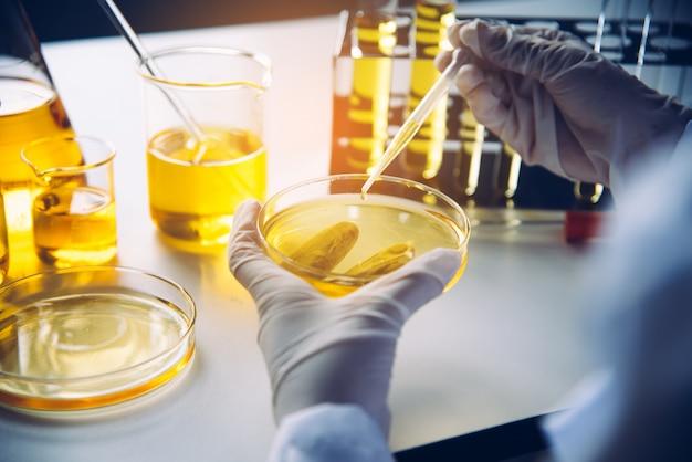 Equipo y experimentos científicos vertiendo aceite científico con tubo de ensayo amarillo haciendo investigación en laboratorio.