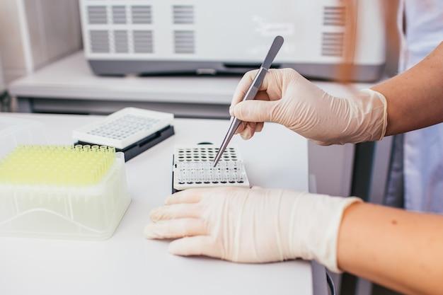 Equipo de laboratorio químico o biologe: manos de mujer con guantes de látex blancos que sostienen un bloque de tubos de ensayo con pinzas debajo de un soporte