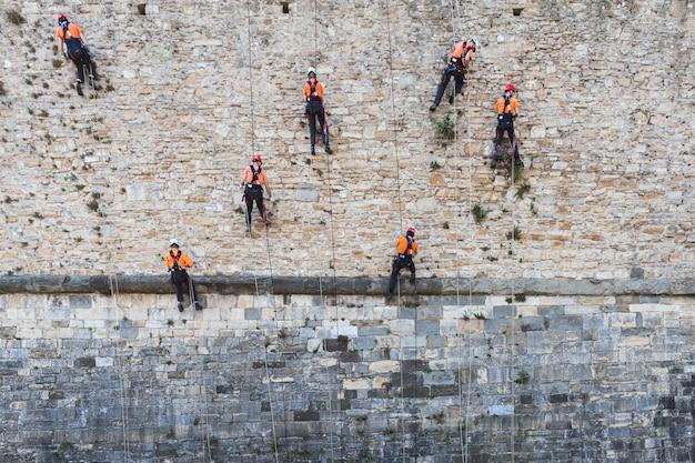 Equipo de trabajadores despeja el muro de plantas