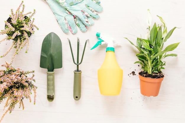 Equipos de jardinería y guante con plantas en macetas dispuestas sobre una mesa blanca