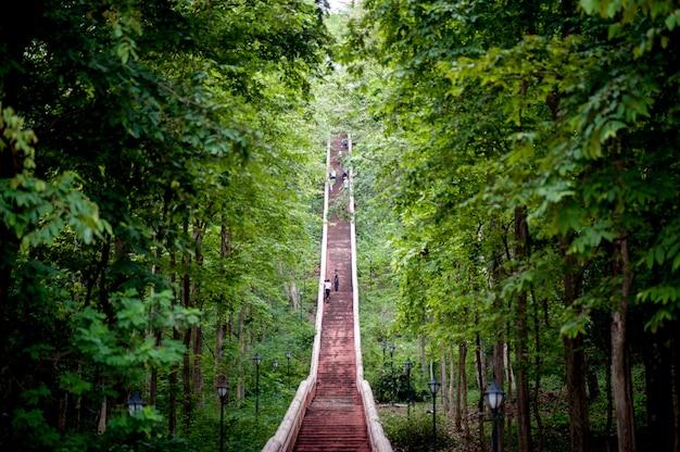 Escaleras y el camino cuesta arriba hasta la cima