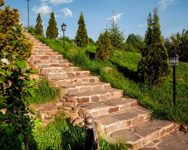 Escaleras del parque llenas de vegetación