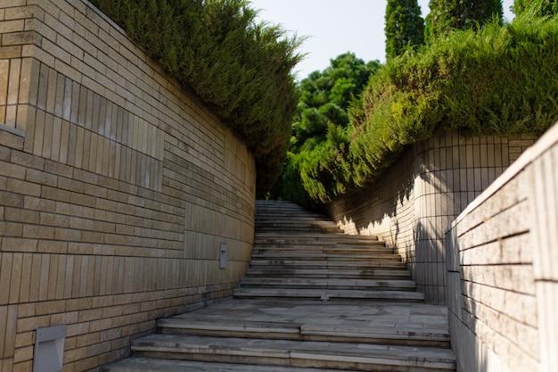 Escaleras de piedra en el jardín verde.