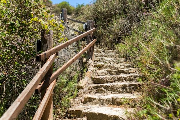 Escalones de piedra y barandas de madera rodeadas de hierbas.