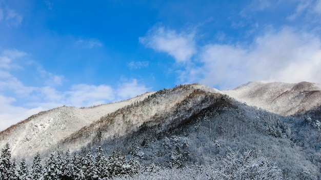 Escena del amanecer cumbre de la fama de invierno