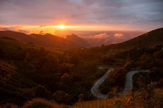 Escena hermosa - punto de visión del tang chiang rai, tailandia del doi pha.
