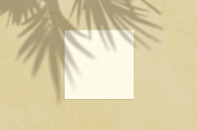 Escena de maqueta de papelería moderna luz del sol de verano. tarjeta de felicitación en blanco vista plana endecha superior con hoja de palma y superposición de sombra de ramas sobre fondo de arena grunge.