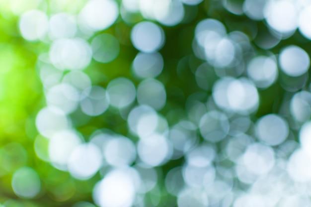 Escena de naturaleza abstracta borrosa con bokeh