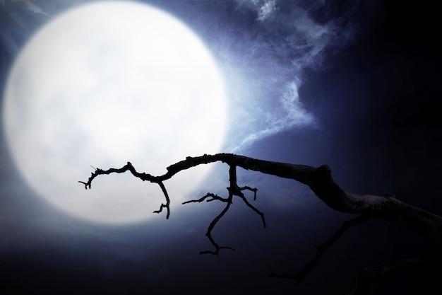 Escena nocturna aterradora con rama, luna llena y nubes oscuras.