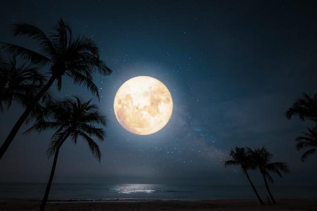 Escena nocturna romántica, hermosa playa tropical de fantasía con estrellas y luna llena en cielos nocturnos.