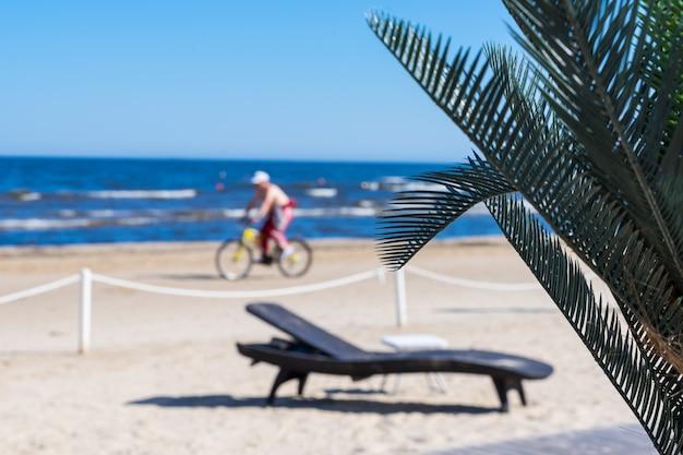 Escena de playa con hojas de palmera y vista blerred de más largo y ciclista en el paisaje de verano. enfoque selectivo